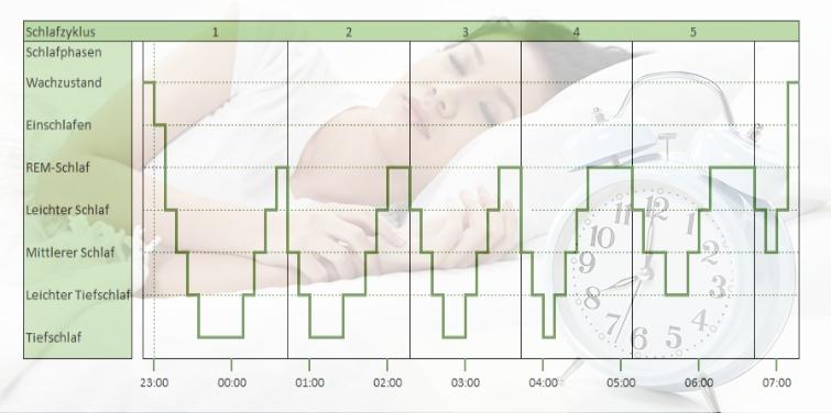 schlafzyklus schlafphasen