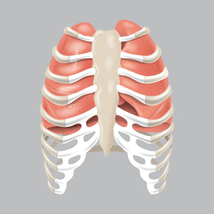 sauerstoffsättigung lunge